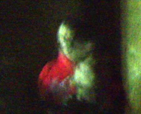 The Alton Towers Ghost Photo Enlarged