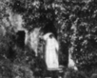 19th Century photo of the White Lady taken at Berry Pomeroy