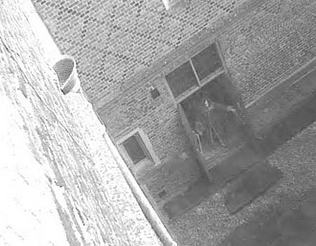 The Hampton Court Palace Ghost Captured on CCTV