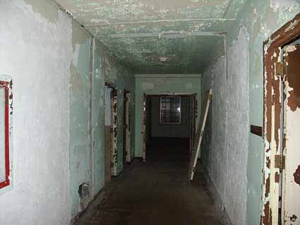 A Corridor in the Rolling Hills Asylum